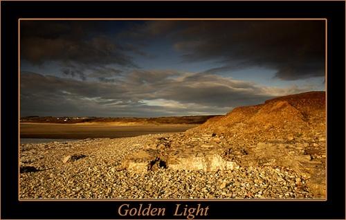 Golden Light by chrissycj