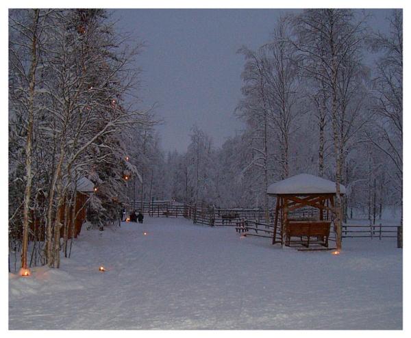 Lapland by ScottRobertson