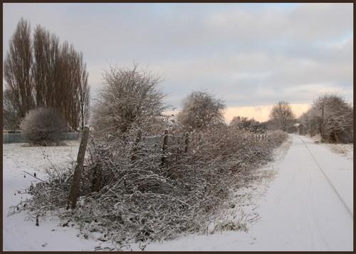 winters day by Sarahmann