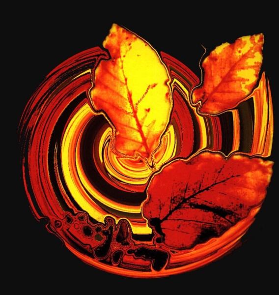 Autumn Swirl by Tosh4photos