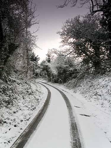 White Horse Wood by Graham_Aylard