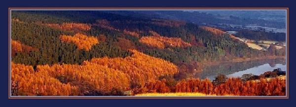 fernilee valley. by sunshot
