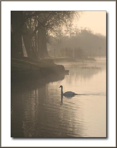 Walking in mist and frost by Mavis