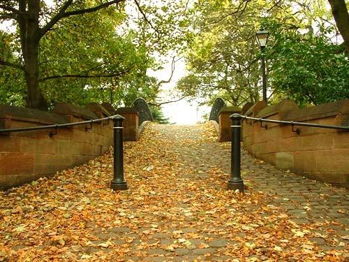 bridge in autumn by smilly