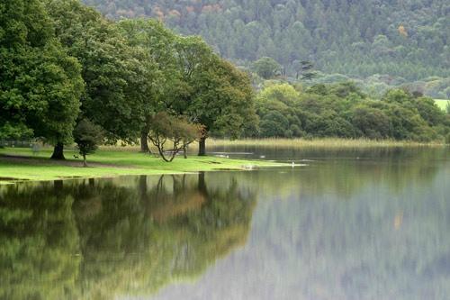 Green reflected by photographerjoe