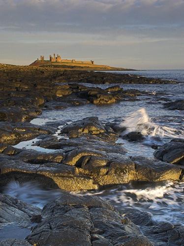 Early Morning at Dunstanburgh by db