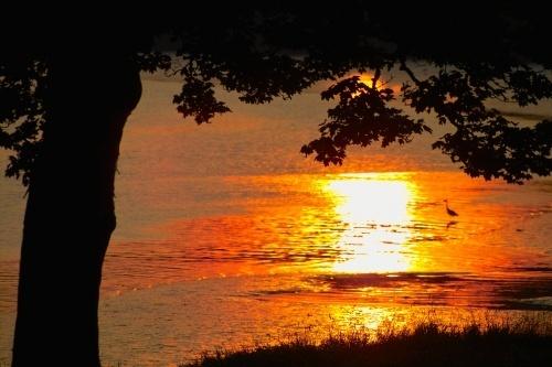 Sunset Sam by o_neip