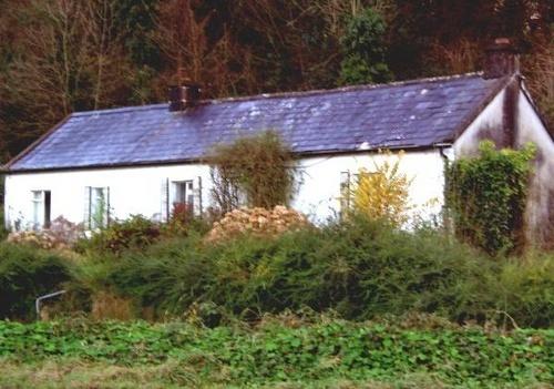 Typical Irish Cottage by bradpete