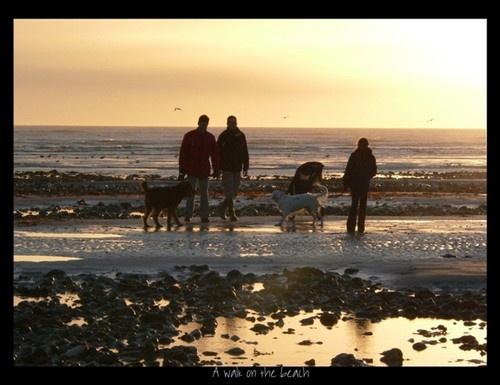 Walk on the beach by Sweetpea