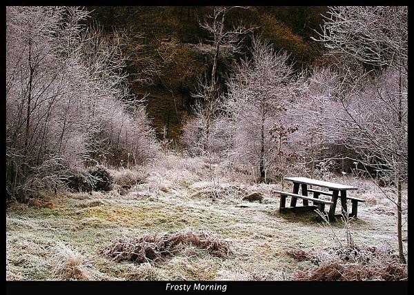 Frosty Morning by Dotrob