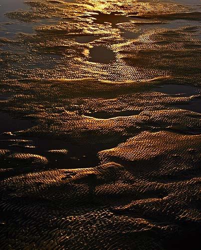 Winter Sands by ericfaragh