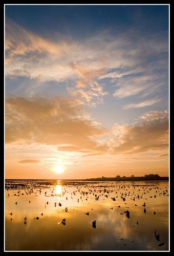 Donna Nook Sunrise 2 by jcaslin