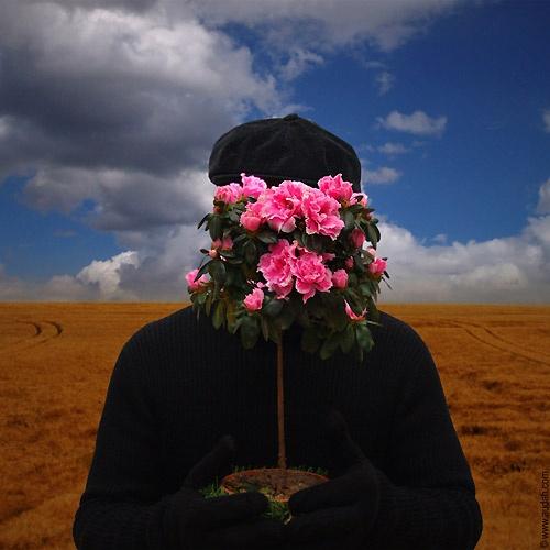 The Gardener by ading