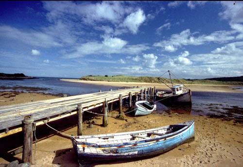 Low Tide 2 by wmccartney