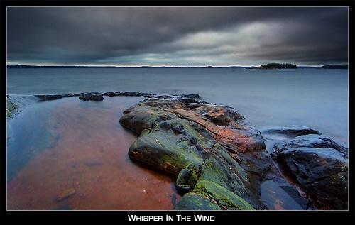 Whisper In The Wind by solkku
