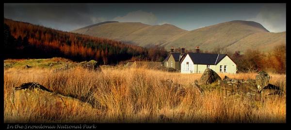 In Snowdonia National Park by Dotrob