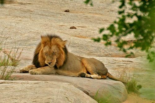 River Rock by leons_photos
