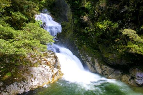 Fiordland falls by brad