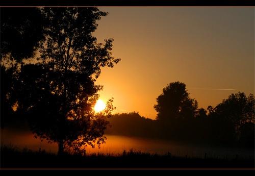 Sunrise by Hedgehog
