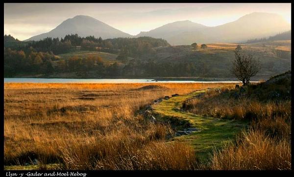 Llyn -y -Gader and Moel Hebog by Dotrob