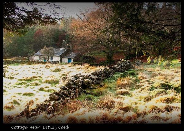 Cottage near Betws y Coed by Dotrob