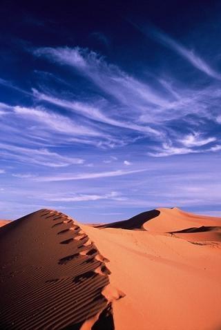 Sahara! by mr_s