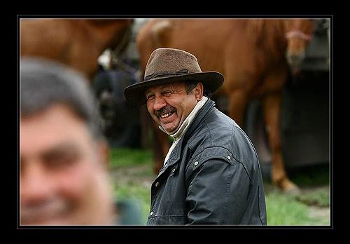 Horse dealer by katomy