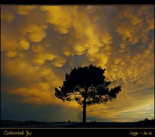 Cottonball Sky by joggievs