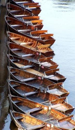 Boats by bono