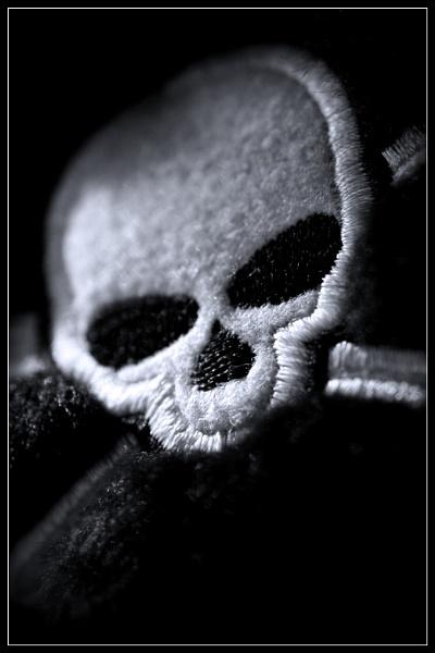 Skull In Moonlight by Morpyre