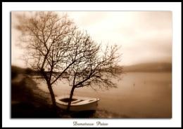 Boat....