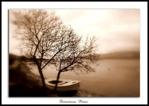Boat.... by Demetreos