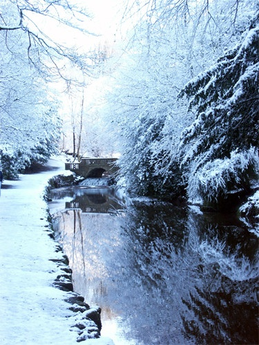 winter reflections by Barleybank