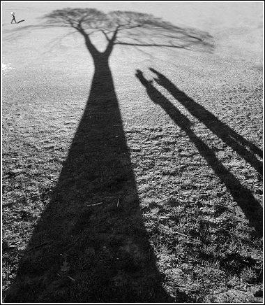 Brooklyn Shadows by martynj