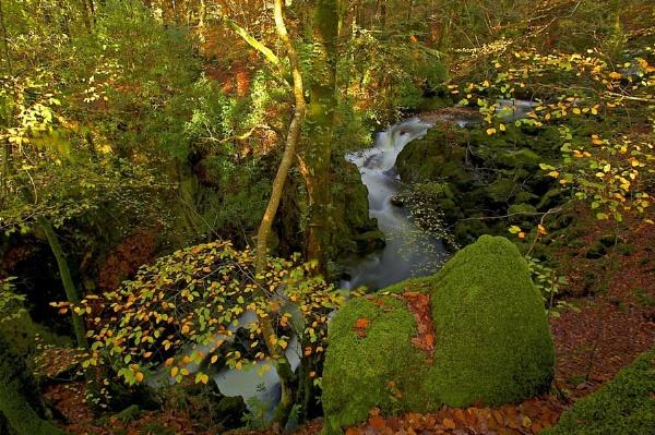 Welsh stream by pierre