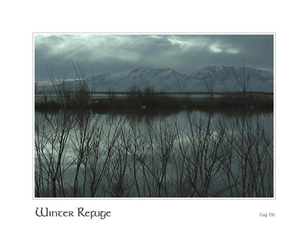 Winter Refuge by gajj