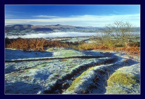 Winter morning by jond