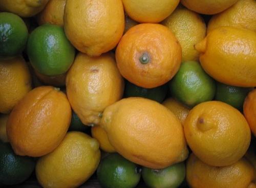 Lemons & Limes by LauraD