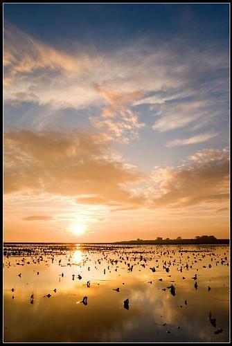 Donna Nook Sunrise by jcaslin