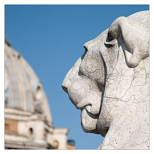 Italian Lion by gmuncaster