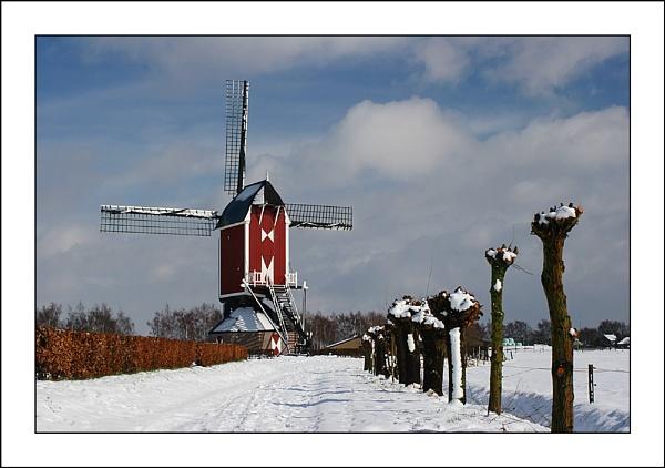 Windmill in White by conrad