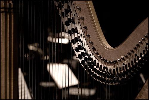 Through The Harp by StephenJames