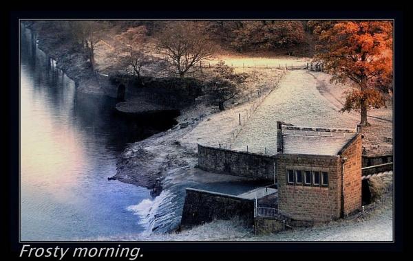 FROSTY MORNING. by sunshot