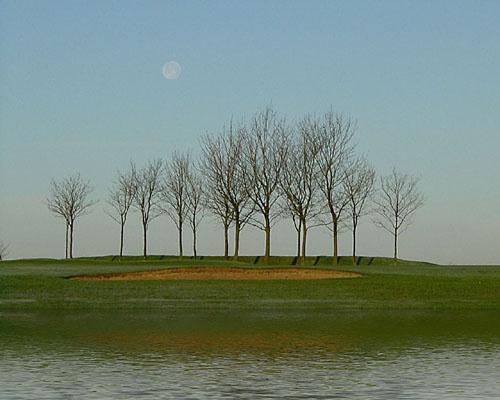 Golf Course Dawn by Max_WW