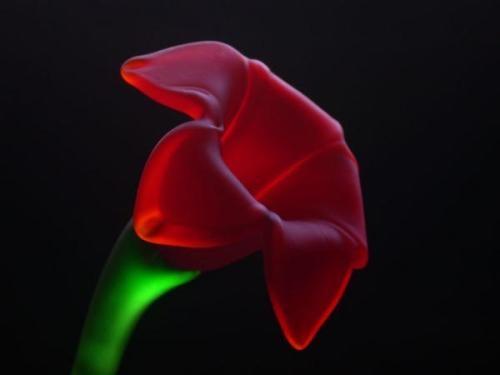 Glowing Flower by Quadophile