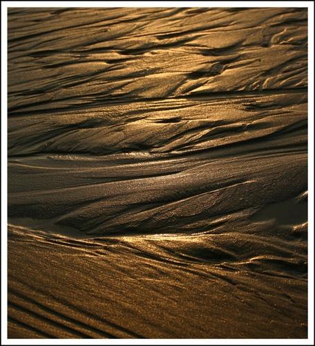 Golden Sands? by sherlob