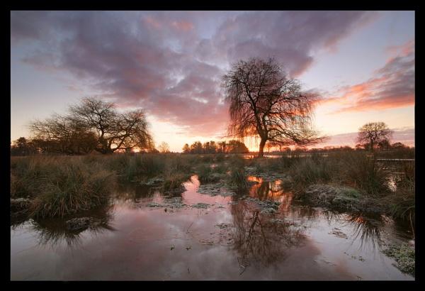 Marshland Sunrise by itsasetamendi