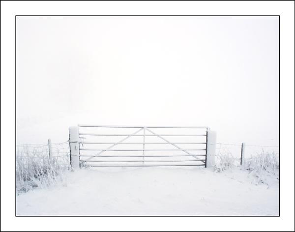 Snow & Fog by conrad