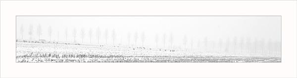 Pseudo Panorama by conrad