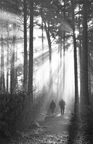 Sunday morning walk by lensman